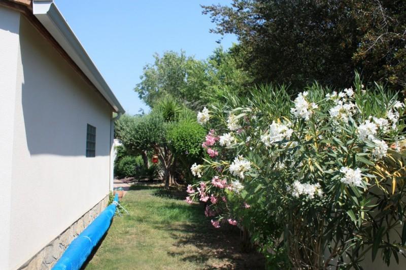 jardi 2