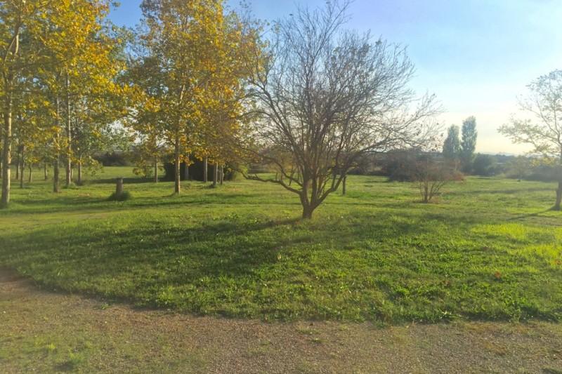jardi1